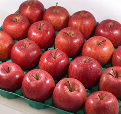 ふるさと納税 りんご リピート