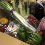 ふるさと納税 野菜セット 吉田